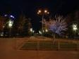 """Ночной Волгоград. Волгоград, проспект Ленина. """"Светящееся дерево"""""""