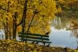 . Скамейка на берегу пруда.