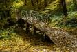 . Березовый мостик в Нижнем парке.