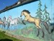 Graffiti of Perm