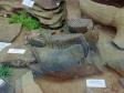 """Museum of history of Naberezhnye Chelny. Экспозиция """"Палеонтология. Животный мир Прикамья"""". Челюсть мамонта."""
