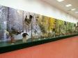 "Museum of history of Naberezhnye Chelny. Экспозиция ""Палеонтология. Животный мир Прикамья"""