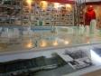 """Museum of history of Naberezhnye Chelny. Экспозиция """"КАМАЗ и город: история и современность"""". Макет города."""