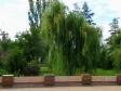 Mamayev Kurgan. Гранитные ниши-урны, в которых хранятся капсулы с землей 12-ти городов-героев.
