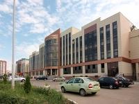 喀山市, 管理机关 Министерство лесного хозяйства Республики Татарстан, Yamashev avenue, 房屋 37А