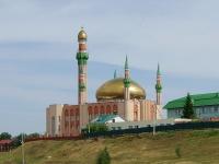 Альметьевск, улица Марджани, дом 82А. мечеть Имени Ризы Фахретдина.