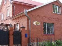 Елабуга, улица Тойминская, дом 19. индивидуальный дом