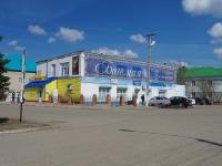 Нурлат, Советская ул, дом 103