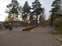 улица Ленина. парк Скарятинский сад