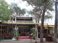Gelendzhik, st Revolyutsionnaya, house 5/4. hotel