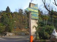 Сочи, парк Зеленая рощаКурортный проспект, парк Зеленая роща