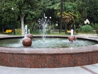 Sochi, st Kooperativnaya. fountain