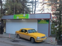 Sochi, Chekhov st, house 52/1. store