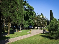 Sochi, public garden