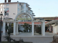 Sochi, Platanovaya st, house 29/2. shopping center