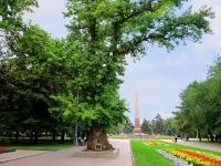 Volgograd, square Pavshikh Bortsov. monument