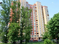 neighbour house: st. Tsentralnaya, house 41. Apartment house
