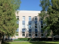 Khimki, Chapaev st, house 6. school of art