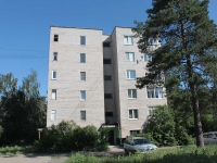 neighbour house: st. Bolshaya Moskovskaya, house 138. Apartment house