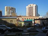 Новосибирск, улица Семьи Шамшиных, дом 20. офисное здание