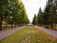 Novosibirsk, st Narymskaya. public garden