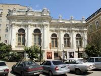 улица Пушкинская, дом 115. музей Ростовский областной музей изобразительных искусств