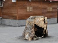 Самара, улица Никитинская, малая архитектурная форма