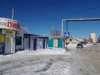 Самара, улица Парниковая, вид на улицу