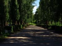 陶里亚蒂市, 街心公园 на бульваре БауманаBauman blvd, 街心公园 на бульваре Баумана