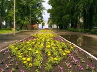 Тольятти, улица Гагарина. парк Парк культуры и отдыха (ПКиО) Центрального района