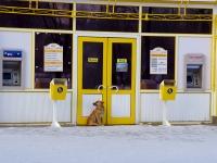 """Тольятти, магазин """"1000 мелочей"""", улица Революционная, дом 38"""