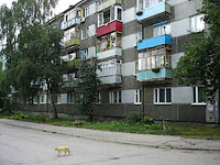 neighbour house: avenue. Kosmonavtov, house 14. Apartment house