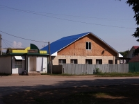 Кинель, улица 50 лет Октября, дом 87. индивидуальный дом