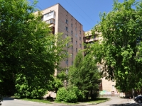 neighbour house: st. Aptekarskaya, house 39. hostel