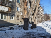 Берёзовский, Академика Королёва ул, дом 6