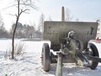 Verkhnyaya Pyshma, monument ПушкаChistov st, monument Пушка