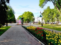 улица Карла Маркса. памятник В.С. Петрову