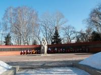 """Тамбов, улица Чичканова. мемориал """"Скорбящая Мать"""""""