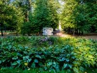 Тимирязевский район, парк Сад/цветникулица Тимирязевская, парк Сад/цветник