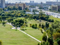,  . 公园