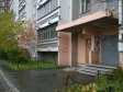 Екатеринбург, Furmanov st., 62: приподъездная территория дома