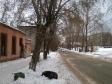 Екатеринбург, Korotky alley., 4А: положение дома