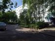 Тольятти, Stepan Razin avenue., 35: приподъездная территория дома