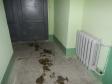 Екатеринбург, Bauman st., 44: о подъездах в доме