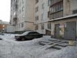Екатеринбург, Shefskaya str., 16: приподъездная территория дома