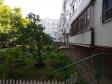 Тольятти, Stepan Razin avenue., 4: приподъездная территория дома