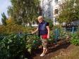 Тольятти, ул. Свердлова, 54: приподъездная территория дома