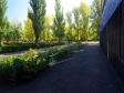Тольятти, Kurchatov blvd., 3: приподъездная территория дома