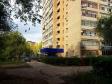 Тольятти, Kurchatov blvd., 8: приподъездная территория дома