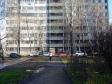 Тольятти, ул. Маршала Жукова, 30: приподъездная территория дома